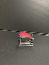 画像1: MINORUMA ピンクバックチャート (1)
